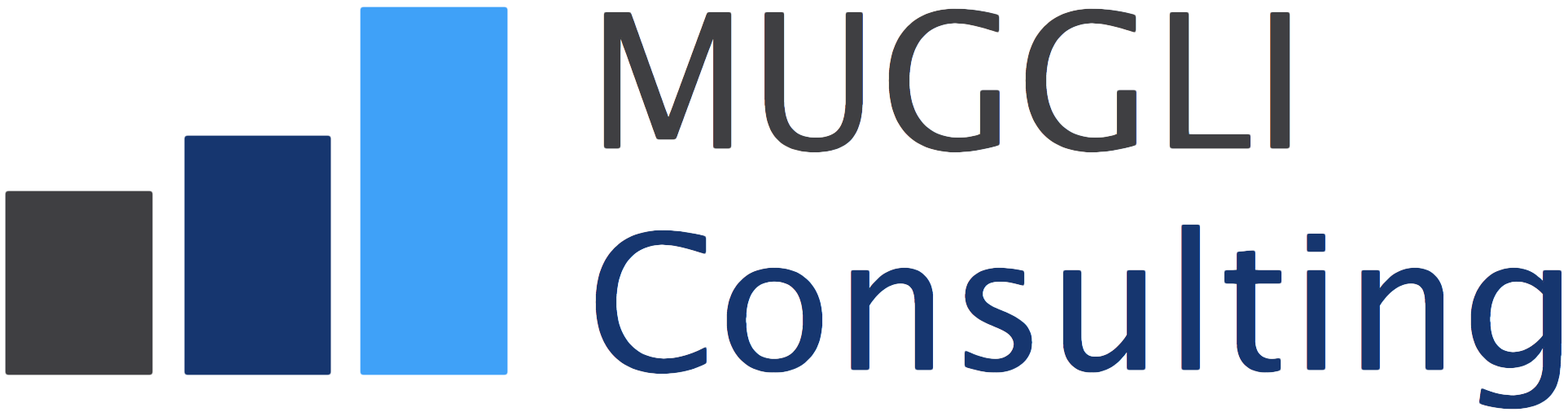 MUGGLI Consulting
